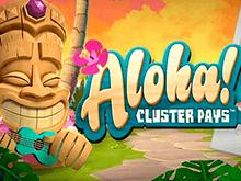 Игровой автомат Aloha Cluster Pays – сыграйте на деньги